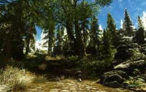 Skyrim — деревья и кусты | Skyrim моды