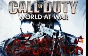 COD WAW Zombies Weapons
