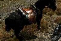 Skyrim — красивое кожаное седло