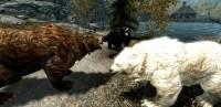 Skyrim - реалистичные текстуры для медведей