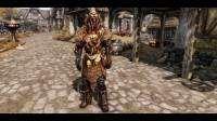Skyrim - новая броня
