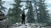 Skyrim - большие деревья
