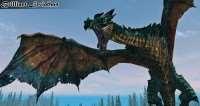 skyrim-mod-dobavlyayushhij-13-novyx-drakonov 3