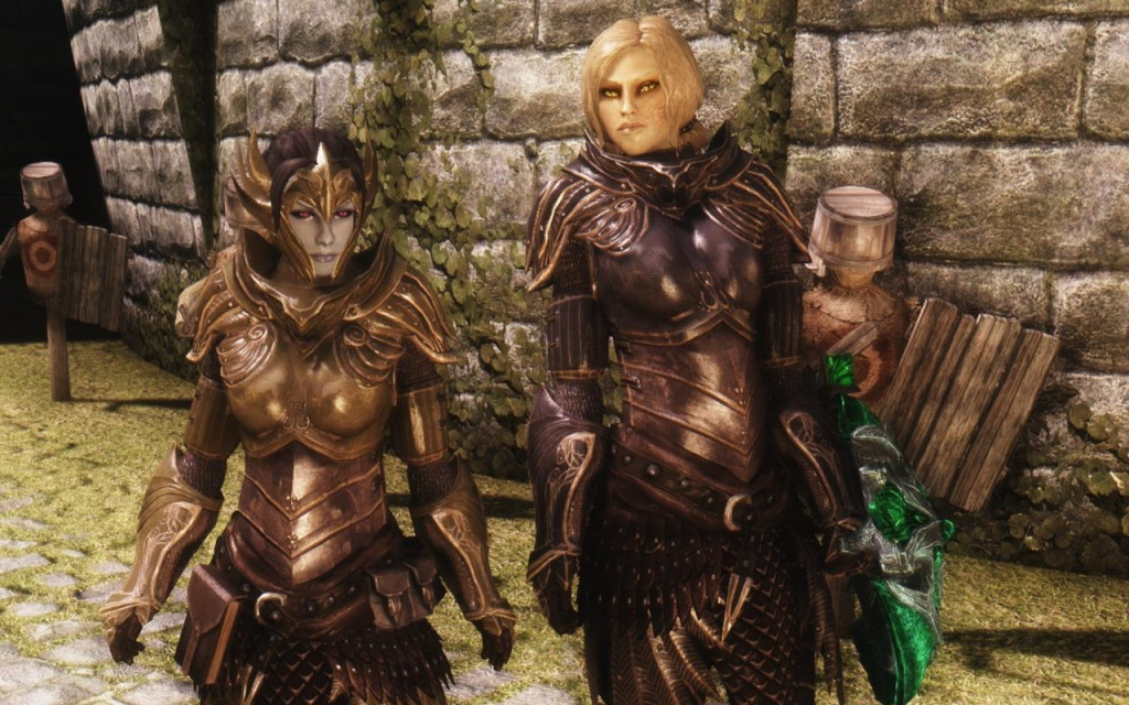 Skyrim мод на все виды сексуальнай брони