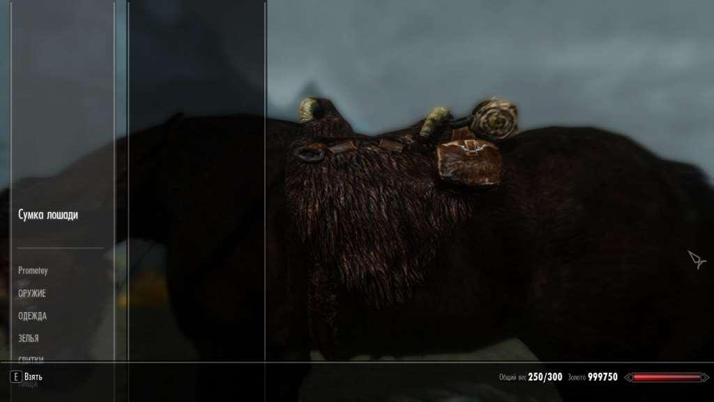 Sjyrim - Сумка лошади
