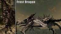 skyrim-4-vida-rascvetki-dlya-broni-drakona 7