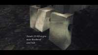 skyrim-sbornik-hd-tekstur 6