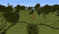 Sparse Woods
