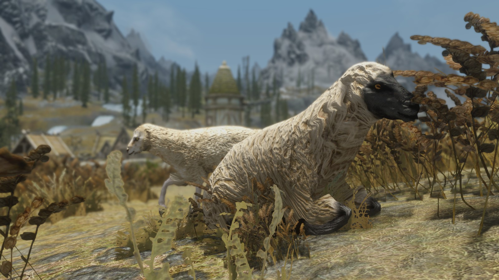 Skyrim - Фермерские животные / Farm Animals