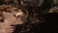 skyrim-uluchshennye-volki