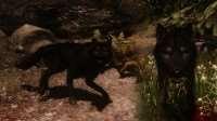 skyrim-uluchshennye-volki 6