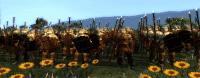kingdoms_2014-07-01_15-53-42-16