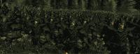 kingdoms_2014-07-01_16-19-44-84