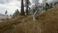 skyrim-neveroyatnaya-trava-2-unbelievable-grass-two 3