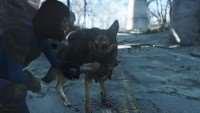 fallout-4-ryukzak-dlya-psa