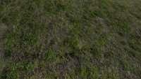skyrim-sborka-tekstur-zemli-3