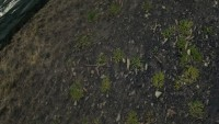 skyrim-sborka-tekstur-zemli-4