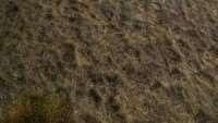 skyrim-sborka-tekstur-zemli-6
