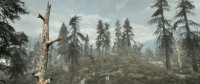 uluchshennaya-flora-skajrima-skyrim-flora-overhaul-se-4