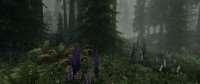 uluchshennaya-flora-skajrima-skyrim-flora-overhaul-se-5