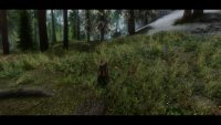 Skyrim - Прекрасный Скайрим