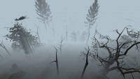 garrys-mod-karta-gm_forest3