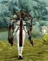 Skyrim - Облачение мага крови