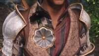 Skyrim - Броня Дамьена из Ведьмака 3