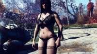 Fallout 4 - Коллекция пресетов FSM для BodySlide