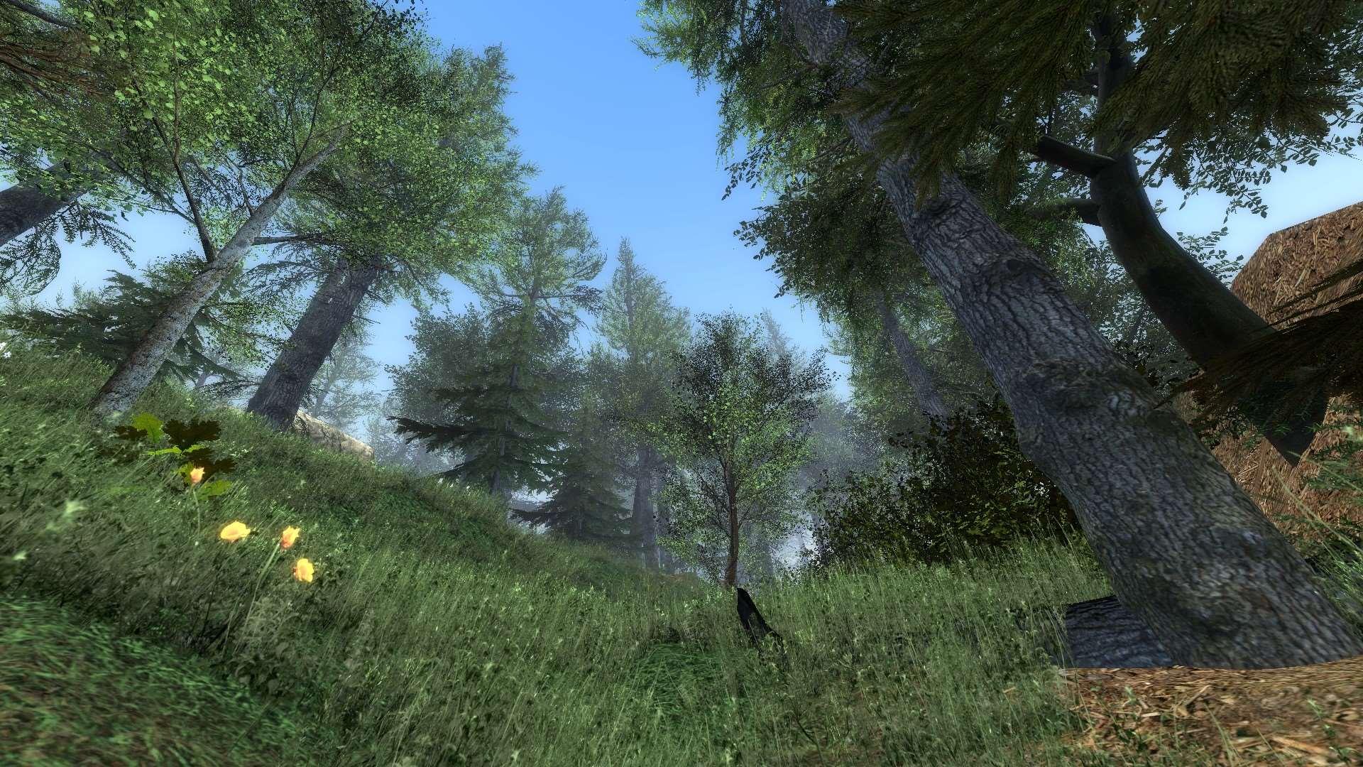 Garrys mod - gm forest final - красивая карта с лесом - Карты ... 261ca4caae9