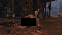 Fallout 4 - Анимации 18+ от Leito