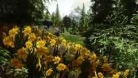 Skyrim - Цветочные поля
