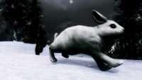 Skyrim - Кролики Скайрима