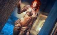 Skyrim - Удивительный мир бронелифчиков