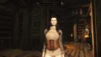 Skyrim - Кожаная броня Daughter of War (unp-HDT)