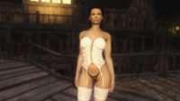Skyrim - Сексуальная одежда UNP-HDT