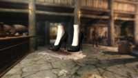 Skyrim - Сексуальная одежда 3 UNP-HDT