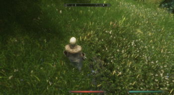 Трава с насыщенным зеленым цветом / Skyrim Grass by infinition (Test)