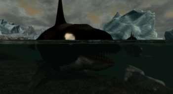 Skyrim — Orcas — Касатки (Киты-косатки)