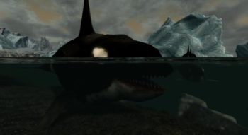 Skyrim — Orcas — Касатки (Киты-косатки) | Skyrim моды