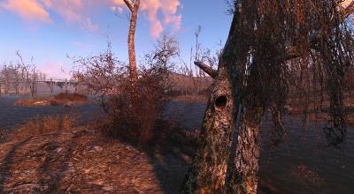 Fallout 4 — Деревья | Fallout 4 моды