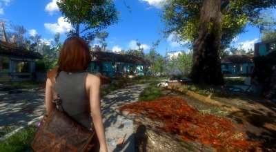 Fallout 4 — Камера как в «Life Is Strange»   Fallout 4 моды