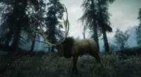 Skyrim — True Elk Of Skyrim | Skyrim моды