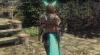 Skyrim — 45 хвостов и ушей для вашего персонажа