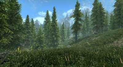 Skyrim SE — Улучшенная растительность / Vanilla Vegetation Overhaul | Skyrim Special Edition моды