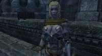 Oblivion — Leina Armor | Oblivion моды