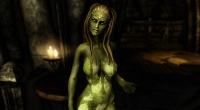 Skyrim — Маормер, Сандмер, Фалмер и Ночной эльф / 4 Race Pack Maormer Sandmer Snow Elf Night Elf | Skyrim моды
