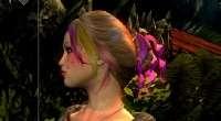 Skyrim — Несколько цветов для волос | Skyrim моды