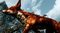 Skyrim — красный лис | Skyrim моды
