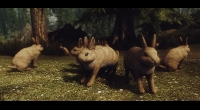 Skyrim — Кролики Скайрима (Rabbits of Skyrim) | Skyrim моды